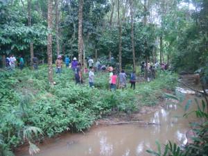 Planting on river banks